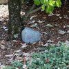 Xtreme Life Plus Landscape Stone - SC7056W-21710