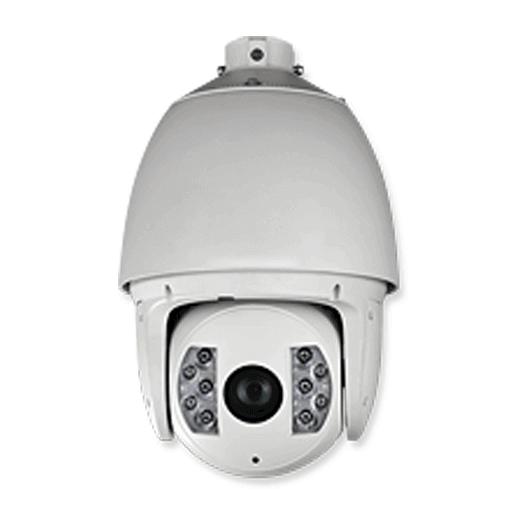 Hikvision OEM IP 2 mp Pan Tilt Zoom White Outdoor Weather Proof/Vandal Resistant Optical Zoom